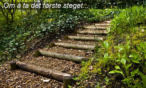 Ta det første steget